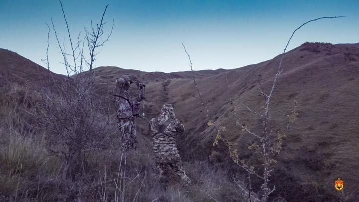 新西兰赤鹿弓箭狩猎