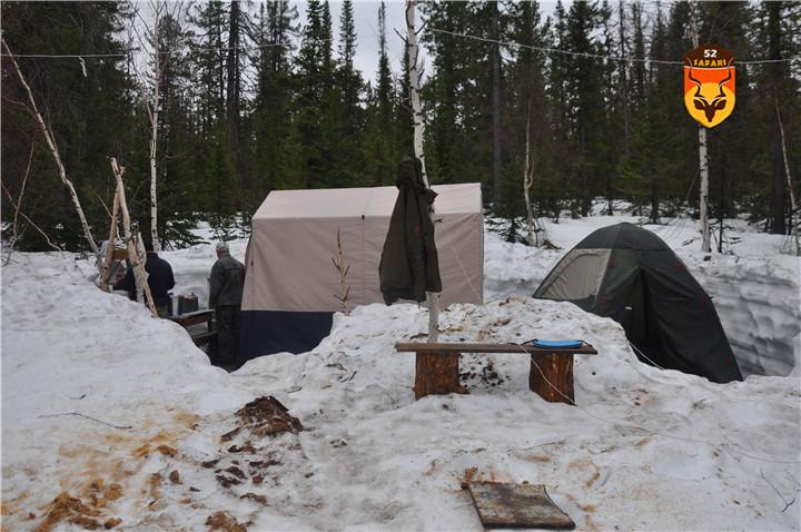 棕熊狩猎营地