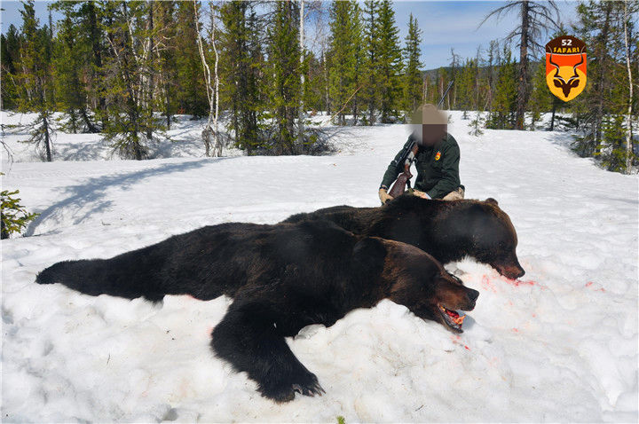 俄罗斯经济狩猎 俄罗斯便宜狩猎
