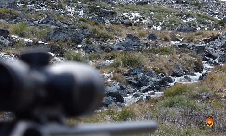 新西兰山区狩猎