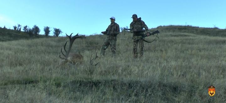 麋鹿狩猎团 四不像狩猎