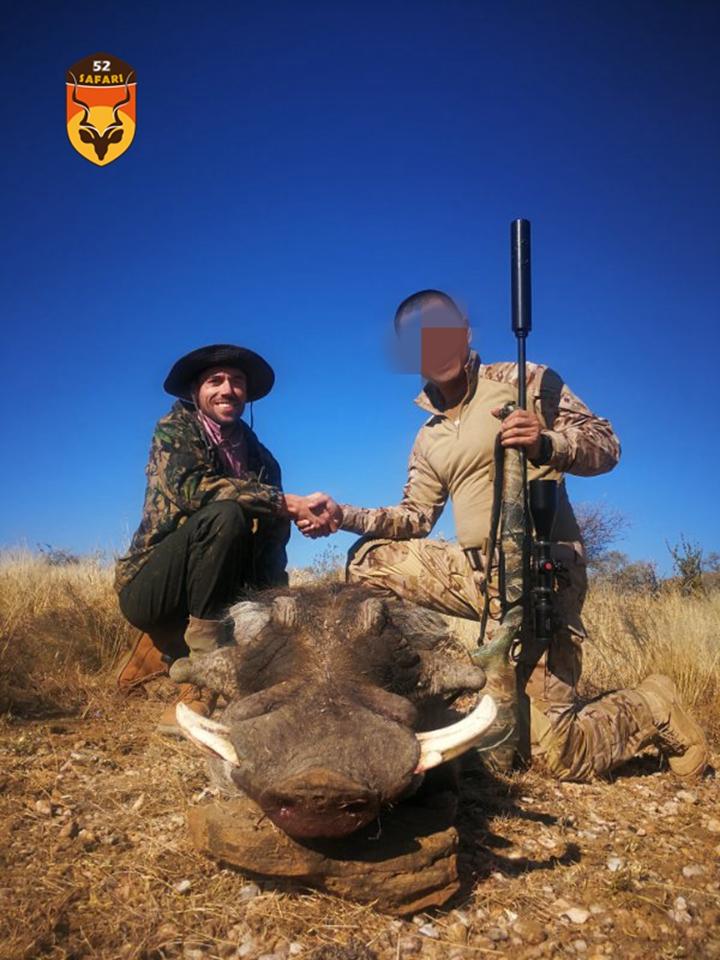 疣猪狩猎 纳米比亚猎物
