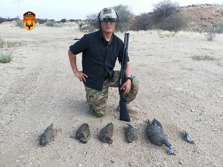 珍珠鸡狩猎 野鸡狩猎 国外狩猎