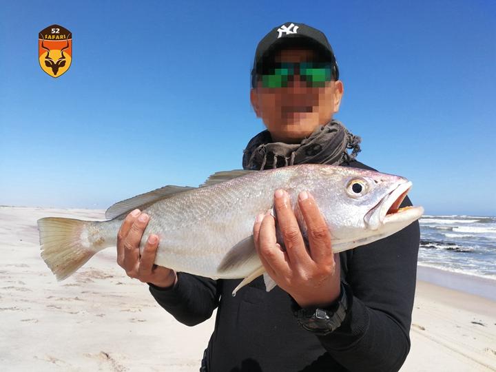 纳米比亚海钓