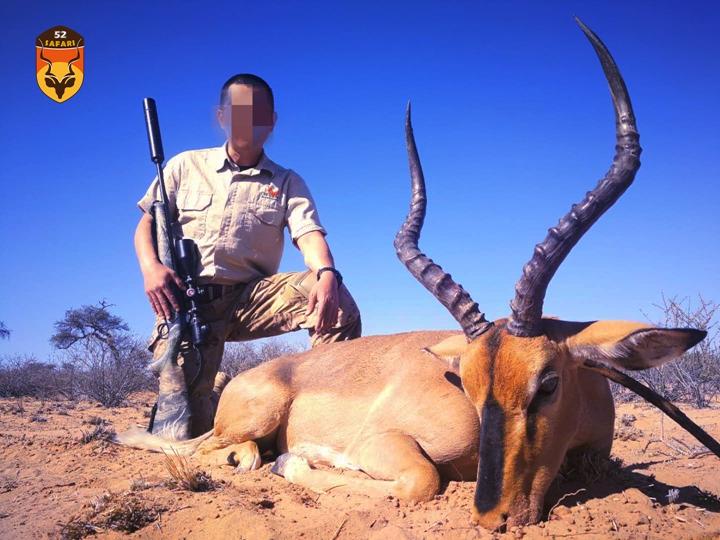 黑脸黑斑羚 黑斑羚狩猎 狩猎费