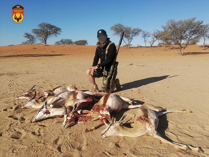 跳羚狩猎团 非战利品狩猎 羚羊狩猎
