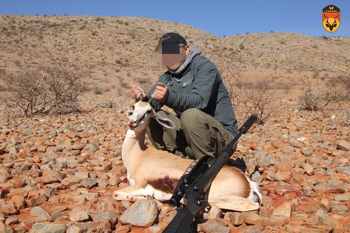 南非狩猎 跳羚狩猎