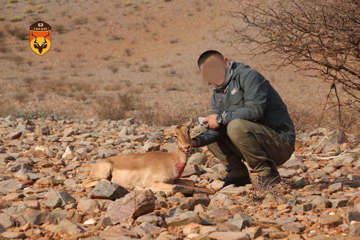 非战利品狩猎