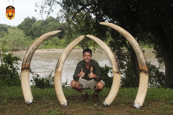 大象狩猎团