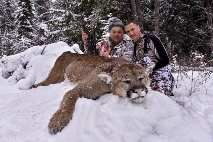 加拿大美洲狮狩猎团