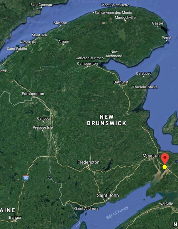 加拿大狩猎 加拿大环境 国外狩猎 北美狩猎 黑熊狩猎 加拿大探险