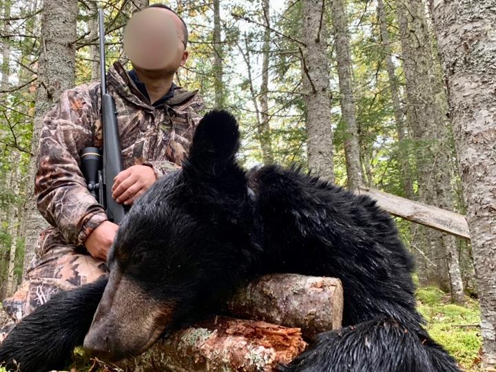 黑熊狩猎 加拿大黑熊 北美黑熊狩猎 北美狩猎 猎人 国外狩猎