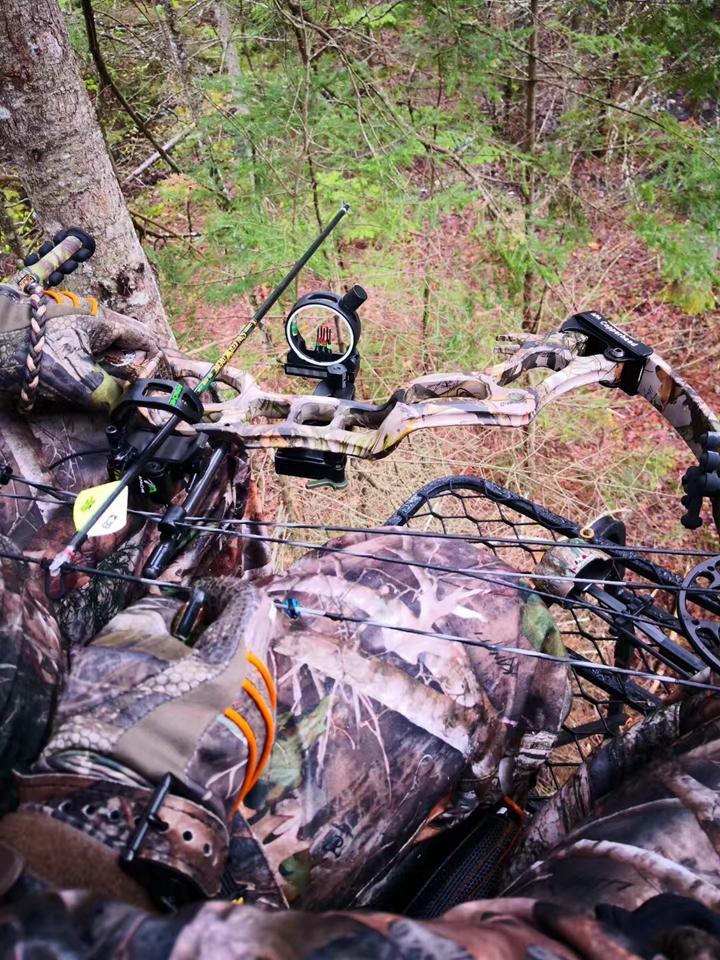 黑熊狩猎 狩猎活动 猎人 户外活动 北美狩猎 北美黑熊