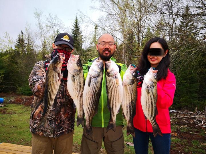 加拿大河钓 北美河钓 加拿大钓鱼