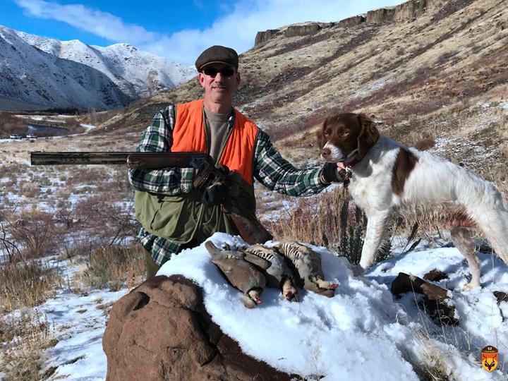 石鸡狩猎 北美狩猎