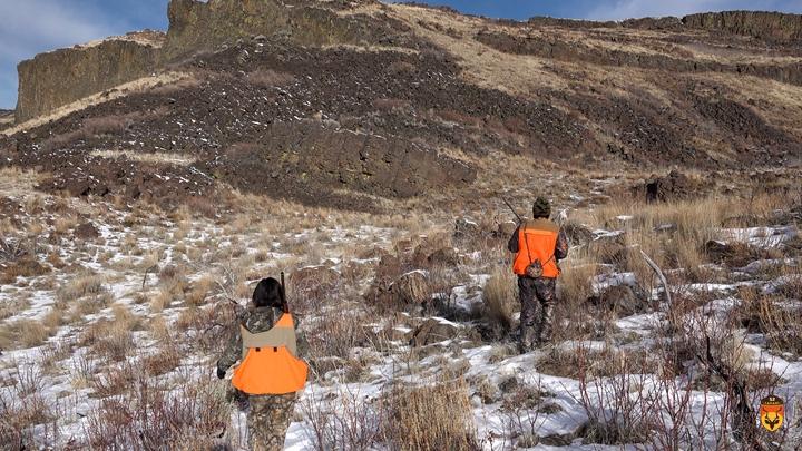 美国石鸡狩猎团