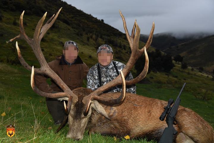 赤鹿战利品狩猎