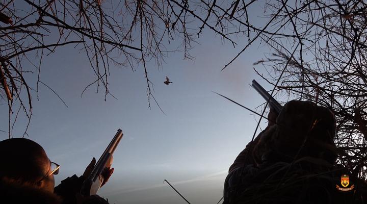 爱德华州野鸭狩猎