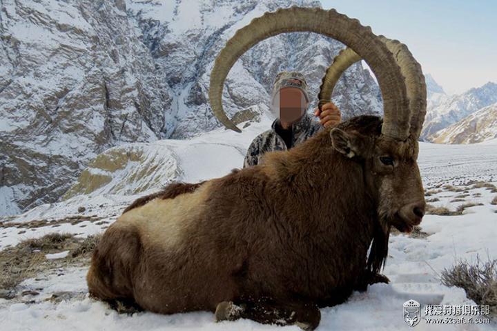 塔吉克斯坦北山羊狩猎