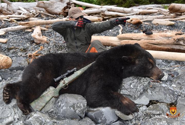 阿拉斯加巨大海边黑熊狩猎团