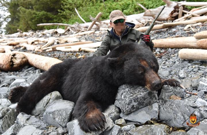 阿拉斯加游艇黑熊狩猎团