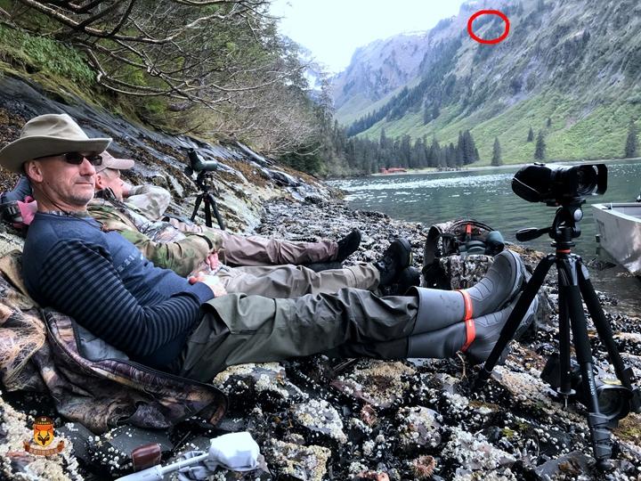 阿拉斯加棕熊狩猎方式