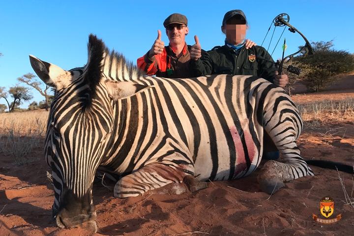 纳米比亚狩猎 斑马狩猎 斑马弓猎
