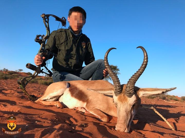 非洲弓猎 非洲狩猎价格