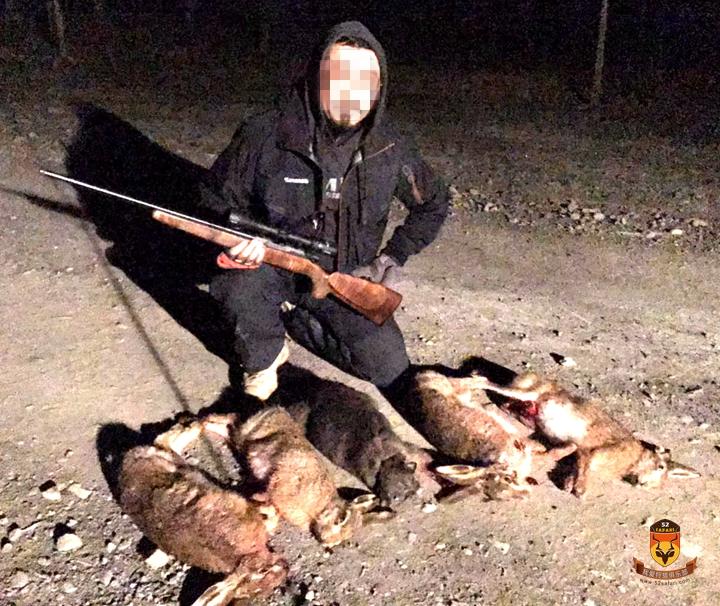 新西兰兔子狩猎