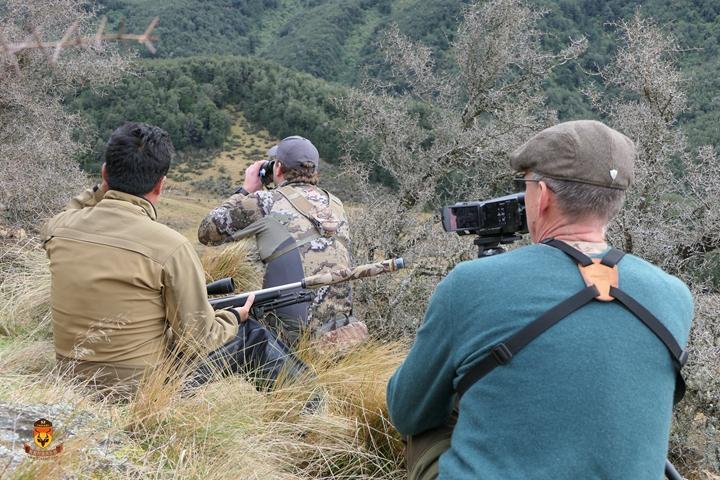 狩猎拍视频