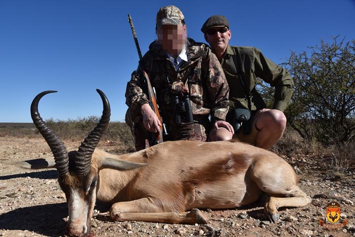 铜色跳羚狩猎