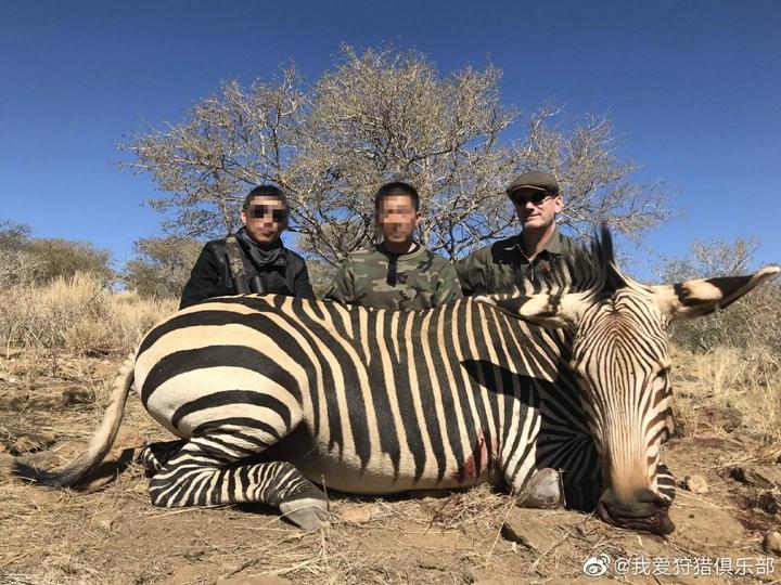 非洲狩猎团