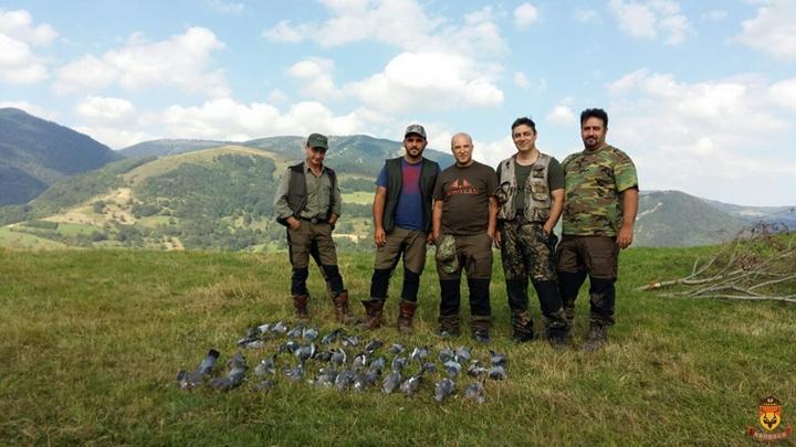 塞尔维亚狩猎 欧洲狩猎 小型猎物狩猎 野鸽子狩猎