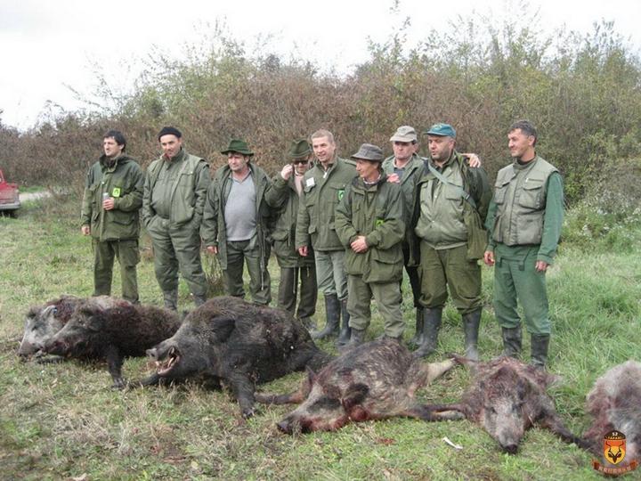 塞尔维亚狩猎 国外狩猎 欧洲狩猎 野猪狩猎