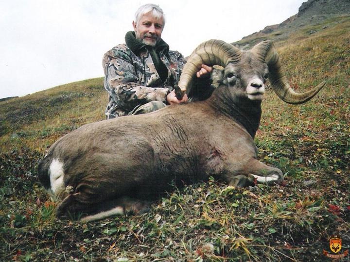 俄罗斯狩猎 雪羊狩猎