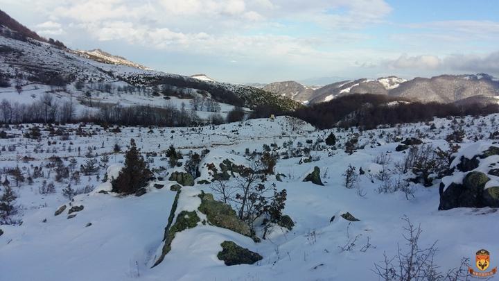塞尔维亚狩猎 大灰狼狩猎 欧洲狩猎 狩猎掩体