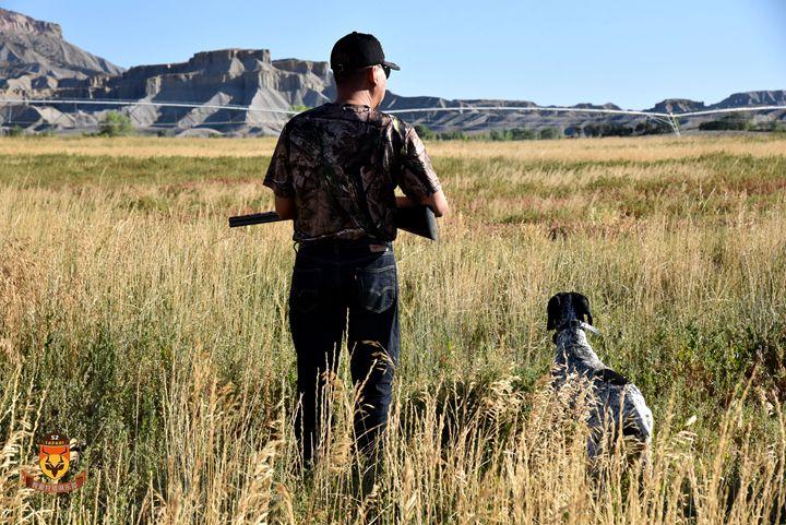 美国飞禽狩猎