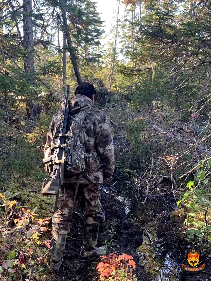 纽芬兰驼鹿狩猎