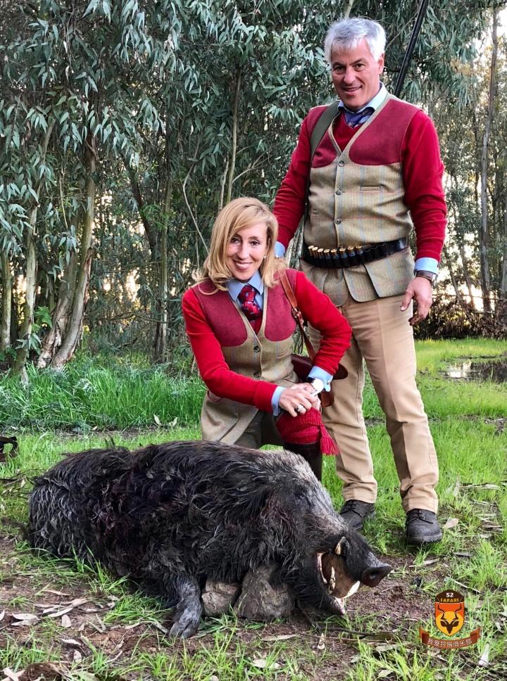 摩洛哥野猪围猎