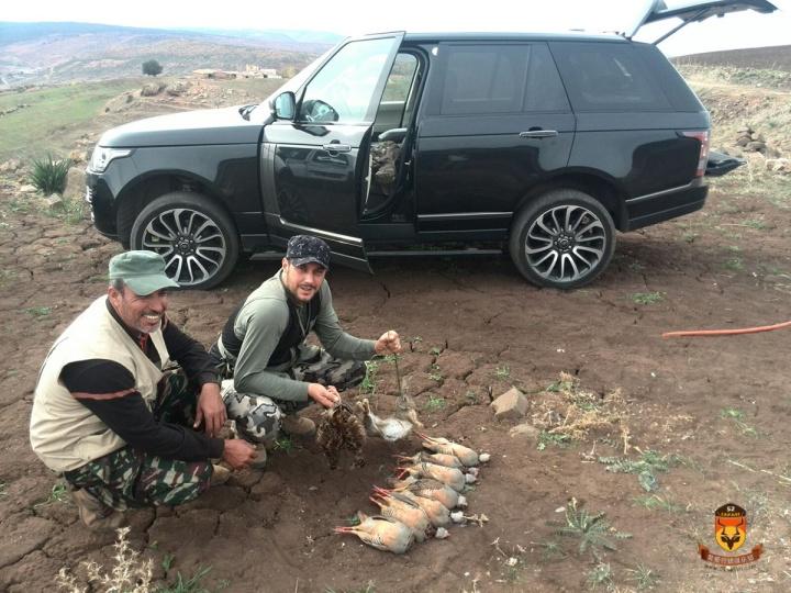 摩洛哥石鸡狩猎