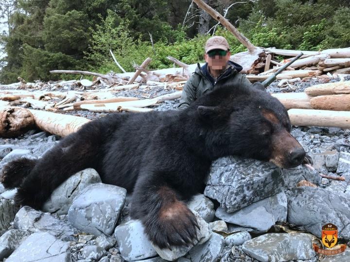 最大黑熊狩猎