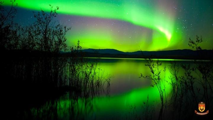 北美北极光观光