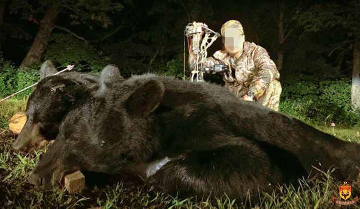 黑熊狩猎 加拿大狩猎 北美狩猎
