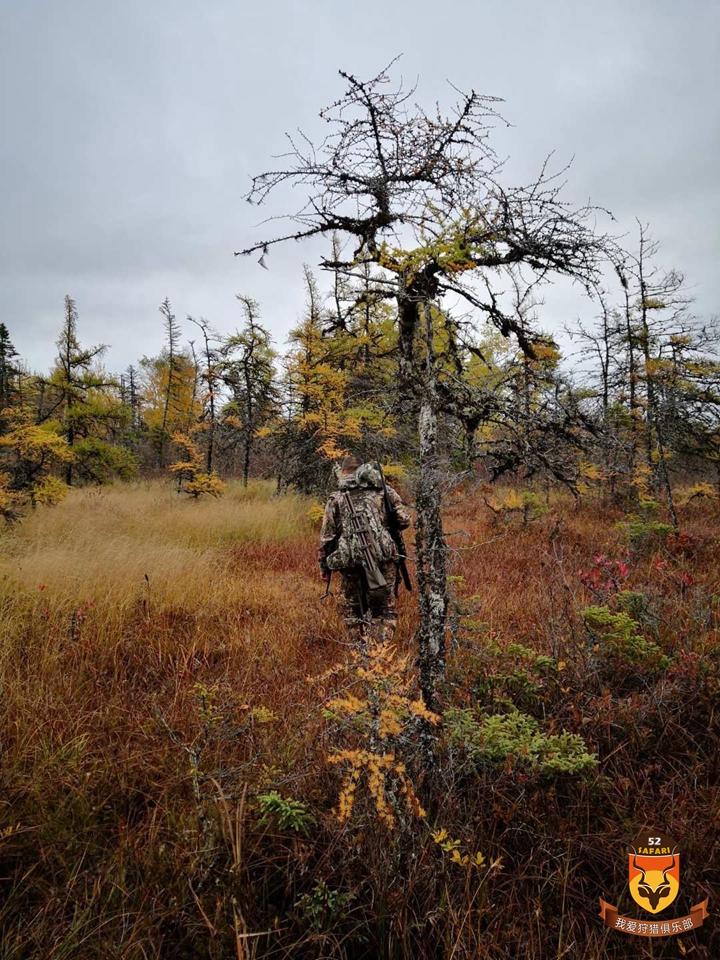 北美狩猎 加拿大狩猎