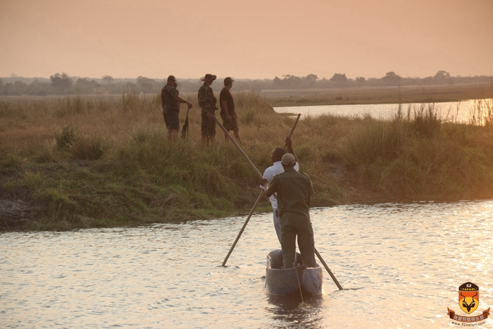 莫桑比克狩猎 河马狩猎