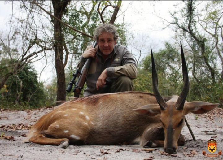 莫桑比克狩猎