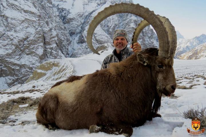 乌兹别克斯坦狩猎 喜马拉雅北山羊狩猎