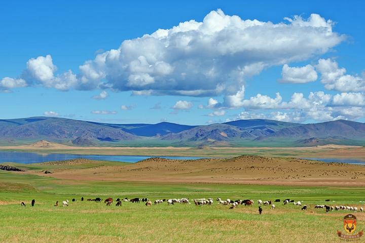 外蒙狩猎 外蒙古狩猎 亚洲狩猎