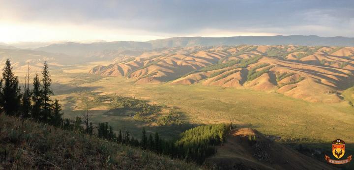 黄羊狩猎 外蒙狩猎 外蒙古狩猎 亚洲狩猎
