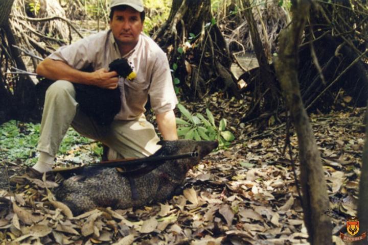 丛林野猪狩猎
